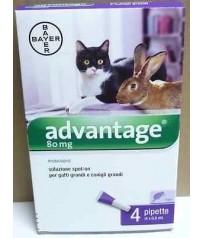 ADVANTAGE 80 mg ANTIPARASSITARIO 4 PIPETTE PER GATTI E CONIGLI SOPRA I 4 Kg.
